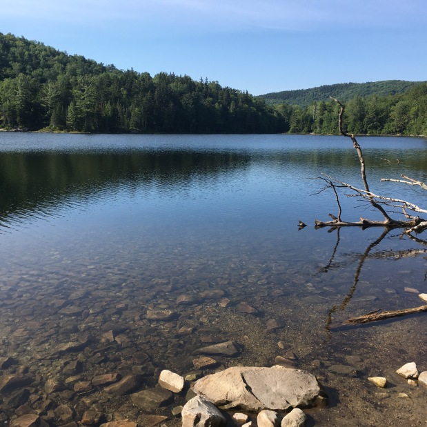 Long Trail: 8/4 Little Rock Pond Shelter 19.8Miles